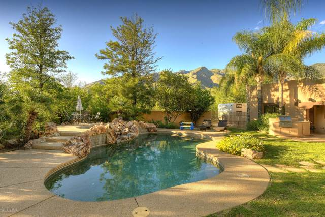 5630 E Shadow Ridge Drive, Tucson, AZ 85750 (#22001438) :: Long Realty - The Vallee Gold Team