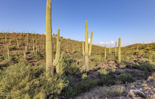 3145 W Mockingbird Lane, Tucson, AZ 85713 (#22001493) :: Long Realty - The Vallee Gold Team