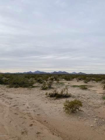 17049 W Saddle Trail #64, Marana, AZ 85653 (#22001558) :: Luxury Group - Realty Executives Arizona Properties