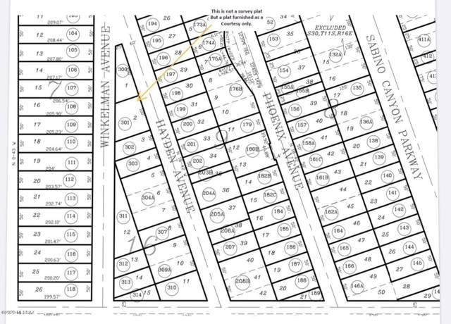 12881 N Hayden Avenue #2, Mt. Lemmon, AZ 85619 (#22001564) :: Long Realty - The Vallee Gold Team