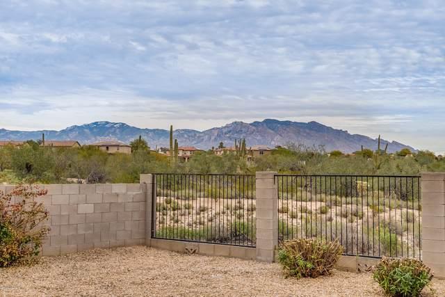 5649 W Copperhead Drive, Marana, AZ 85742 (MLS #22001567) :: The Property Partners at eXp Realty