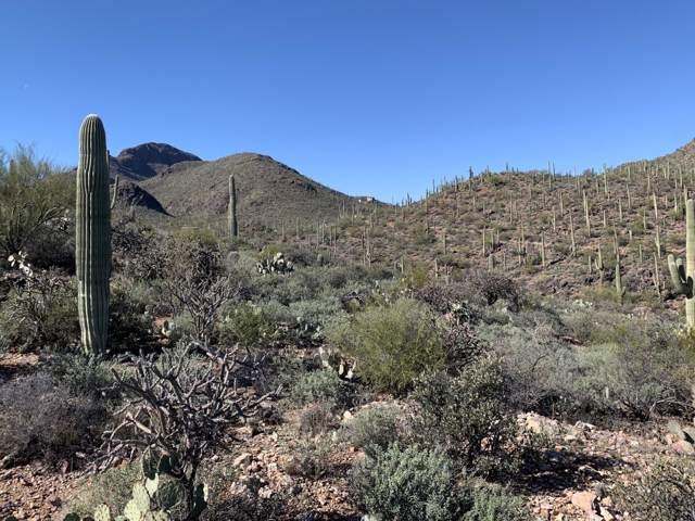 3184 W Mockingbird Lane, Tucson, AZ 85713 (#22001761) :: AZ Power Team | RE/MAX Results