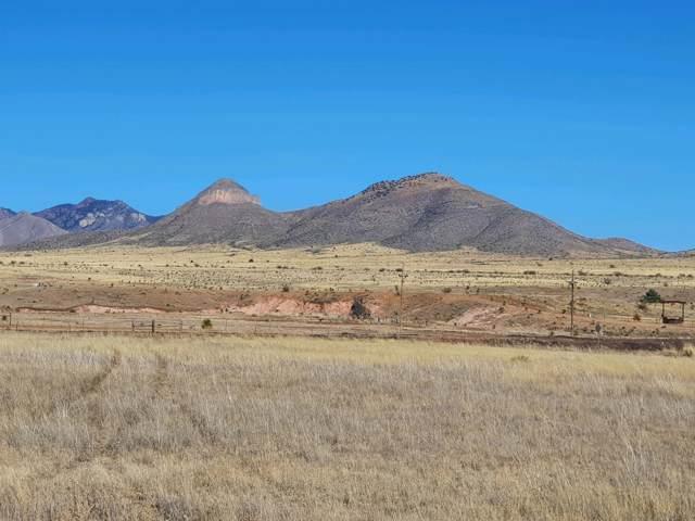 00 Lower Elgin Road, Elgin, AZ 85611 (#22001770) :: Long Realty Company