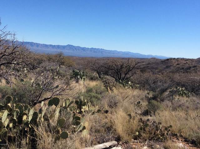 E Mt Lemmon Highway, Oracle, AZ 85623 (#22001890) :: Long Realty - The Vallee Gold Team