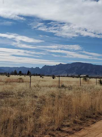 Papago Way & Quarter Horse Rd #216, Cochise, AZ 85606 (#22001976) :: Long Realty Company