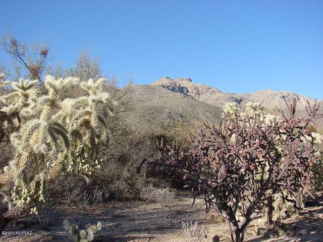 4991 N Placita Borboa NE #15, Tucson, AZ 85749 (#22002322) :: The Josh Berkley Team