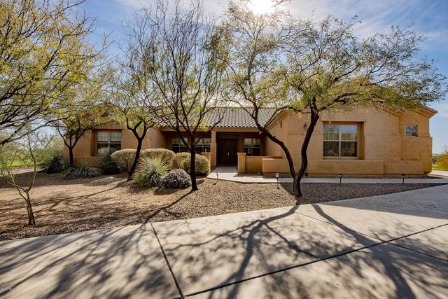 13141 W Butter Bush Street, Tucson, AZ 85743 (#22002531) :: Long Realty - The Vallee Gold Team