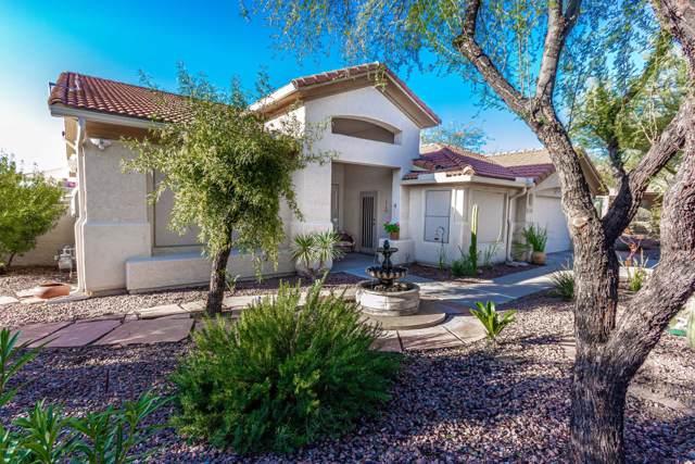 11806 N Mountain Laurel Place, Tucson, AZ 85737 (#22002569) :: The Josh Berkley Team