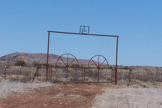 80 Ac High Creek Road #017, Willcox, AZ 85643 (#22002611) :: The Josh Berkley Team