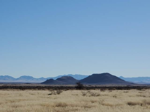 Hwy 191, Cochise, AZ 85606 (#22003282) :: The Josh Berkley Team