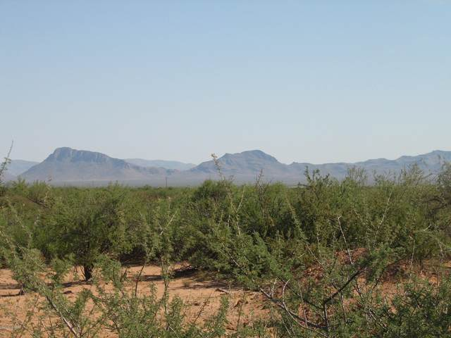 20 Acres S Off Parker Road, San Simon, AZ 85632 (#22003357) :: Long Realty - The Vallee Gold Team