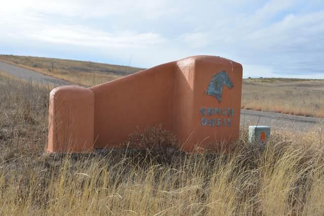 11 Ranch Oasis Drive #11, Sonoita, AZ 85637 (#22003425) :: Keller Williams