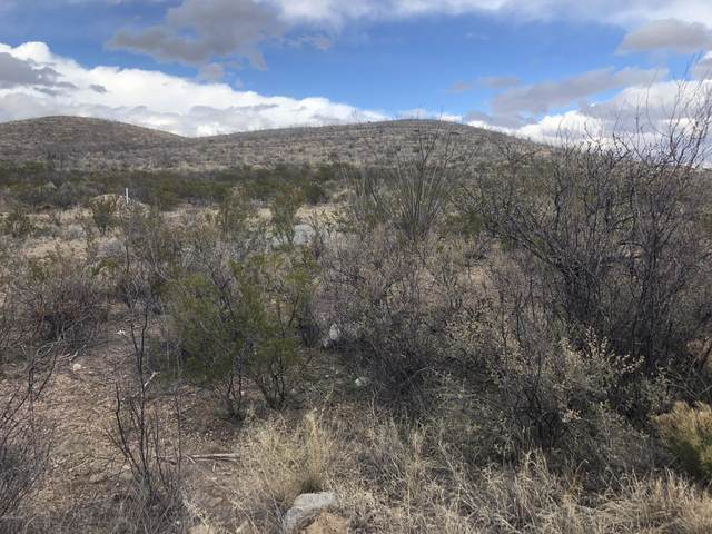 TBD S Charleston Road, Tombstone, AZ 85638 (#22004011) :: Long Realty - The Vallee Gold Team