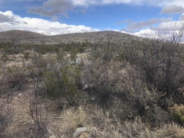 TBD S Charleston Road, Tombstone, AZ 85638 (#22004011) :: Gateway Partners | Realty Executives Arizona Territory