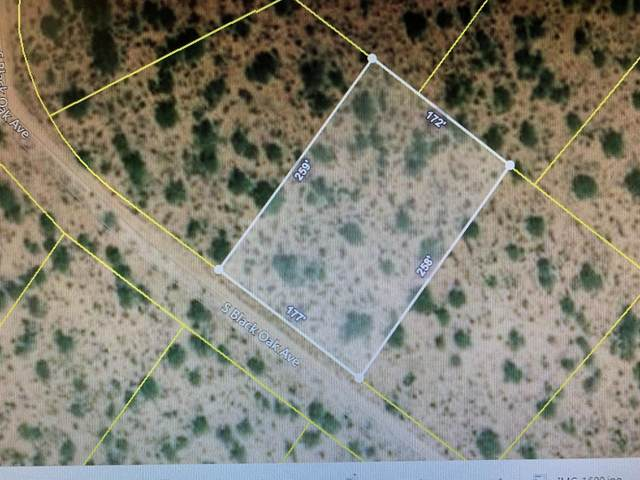 15921 Black Oak Avenue #332, Tucson, AZ 85736 (#22004089) :: Long Realty Company