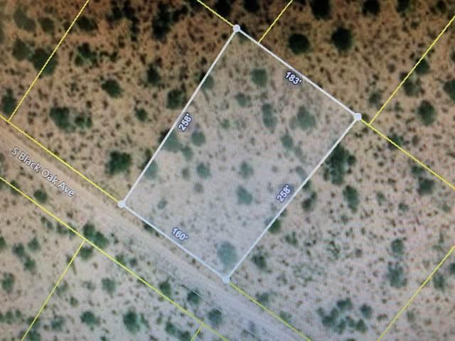 15941 Black Oak Avenue #333, Tucson, AZ 85736 (#22004093) :: Long Realty Company