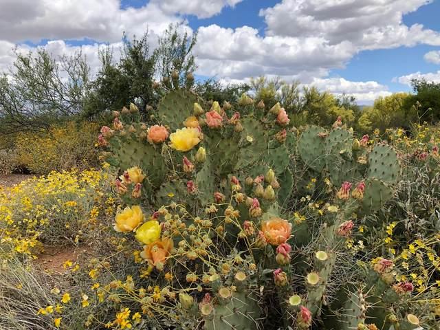 11107 E Escalante Road, Tucson, AZ 85730 (#22004151) :: The Local Real Estate Group   Realty Executives