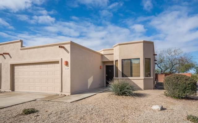 8169 N Peppersauce Drive, Oro Valley, AZ 85704 (#22004168) :: Realty Executives Tucson Elite