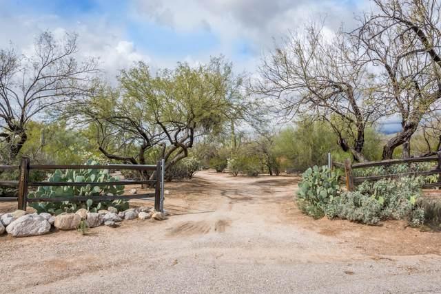 11520 E Sneller Vista Drive, Tucson, AZ 85749 (#22004184) :: Long Realty Company