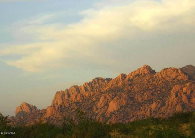 Lot 12 E Roadrunner Trail #12, St. David, AZ 85630 (#22004259) :: The Josh Berkley Team