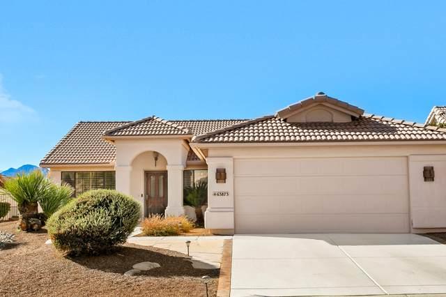 63873 E Squash Blossom Lane, Saddlebrooke, AZ 85739 (#22004445) :: Long Realty Company