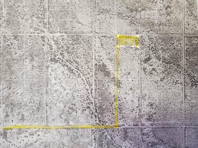 1.07 Acre Lot Az Sunsites #3 #15, Pearce, AZ 85625 (MLS #22004549) :: The Property Partners at eXp Realty
