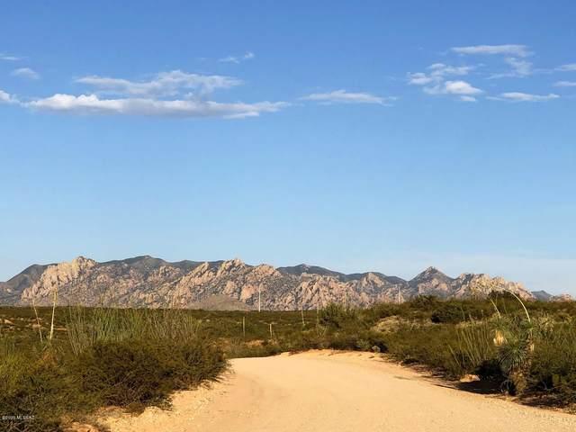 183 E Dragoon Ranch Road #183, Pearce, AZ 85625 (MLS #22004550) :: The Property Partners at eXp Realty