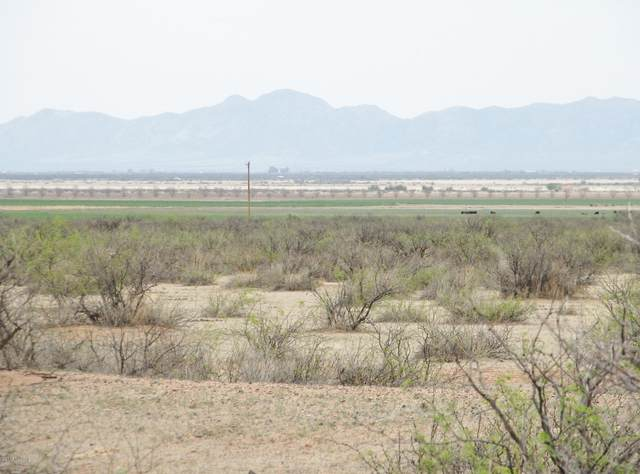 440 Acres Hwy 191 At Allen Road, Pearce, AZ 85625 (MLS #22004564) :: The Property Partners at eXp Realty