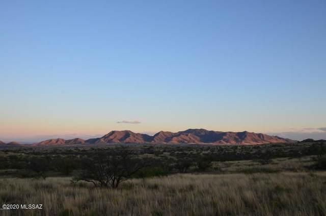 TBD E Adams Ranch Road, Dragoon, AZ 85609 (MLS #22004653) :: The Property Partners at eXp Realty