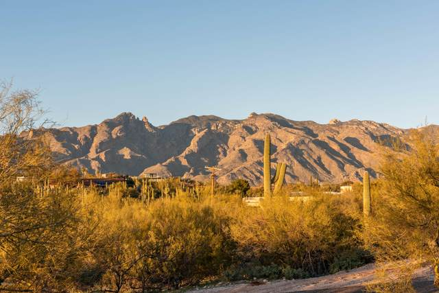 4424 N Hacienda Del Sol Road #241, Tucson, AZ 85718 (#22004673) :: Long Realty Company