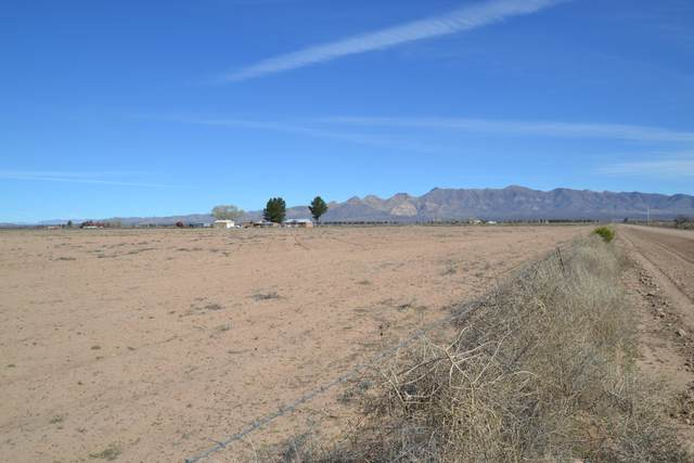 Tbd W Hedges Road, Elfrida, AZ 85610 (#22004784) :: Long Realty Company