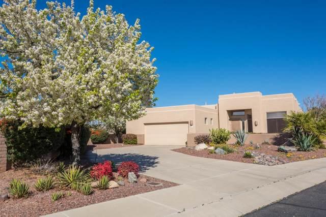 8341 N Starfinder Place, Tucson, AZ 85704 (#22004814) :: Realty Executives Tucson Elite