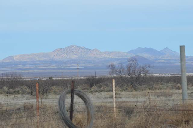 W Grants Road, Mc Neal, AZ 85617 (#22004875) :: Long Realty - The Vallee Gold Team