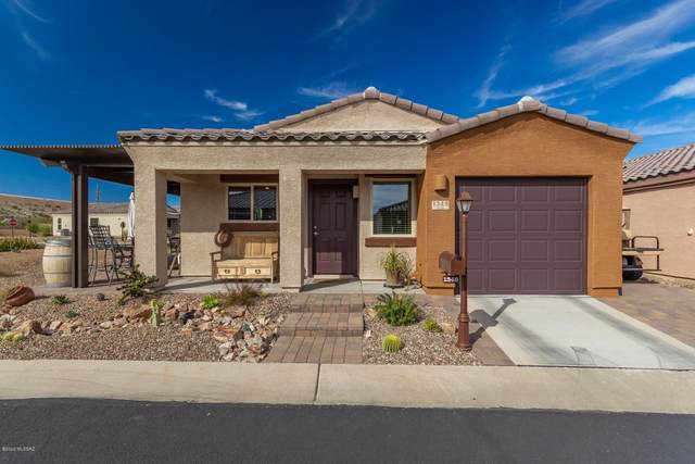 1348 W Vuelta Oruga, Sahuarita, AZ 85629 (#22004939) :: Gateway Partners | Realty Executives Arizona Territory