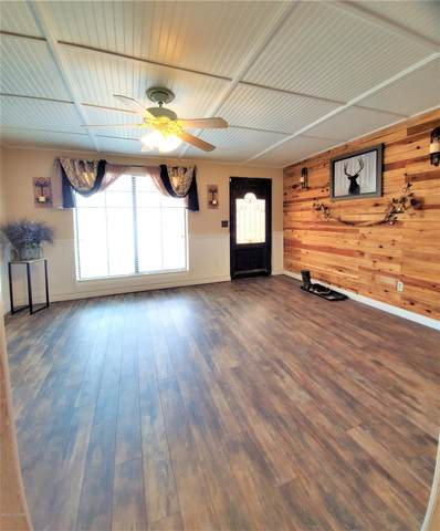 6616 S Burcham Avenue, Tucson, AZ 85756 (#22004980) :: Long Realty Company