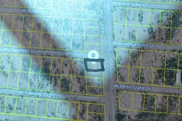 TBD N West Point Road #147, Douglas, AZ 85607 (#22005075) :: Gateway Partners | Realty Executives Arizona Territory