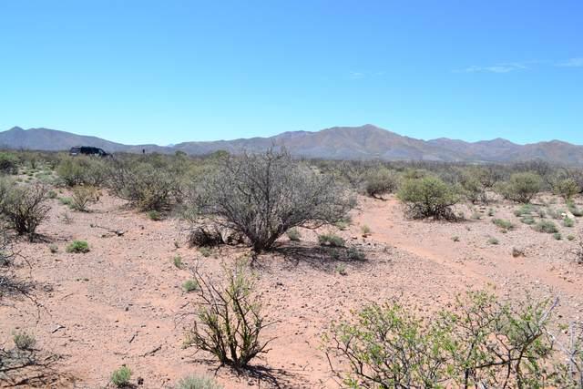 TBD No Address #21, Bisbee, AZ 85603 (#22005076) :: Gateway Partners | Realty Executives Arizona Territory