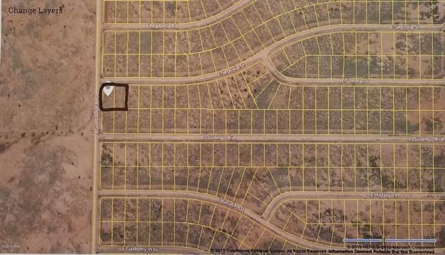 TBD E Segovia Street #457, Douglas, AZ 85607 (#22005082) :: Gateway Partners | Realty Executives Arizona Territory