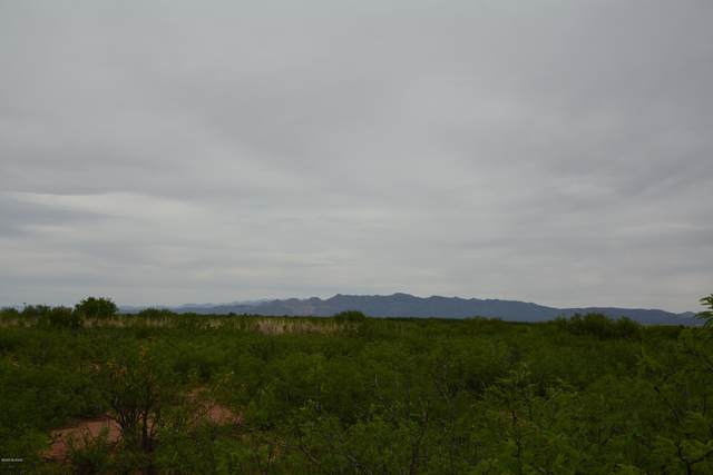TBD W Tombstone Trail #28, Mc Neal, AZ 85617 (#22005100) :: Gateway Partners | Realty Executives Arizona Territory