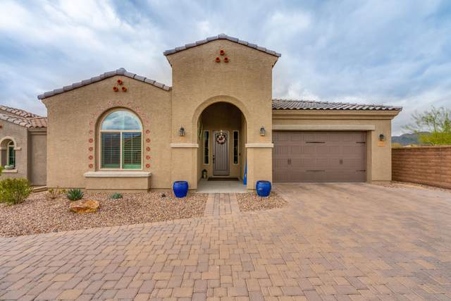 13305 N Rainbow Cactus Court, Oro Valley, AZ 85755 (MLS #22005197) :: The Property Partners at eXp Realty