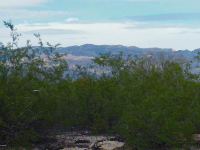 All Faiths Memorial Park 1 Ac. 1.0AC, Tucson, AZ 85748 (#22005513) :: Long Realty - The Vallee Gold Team