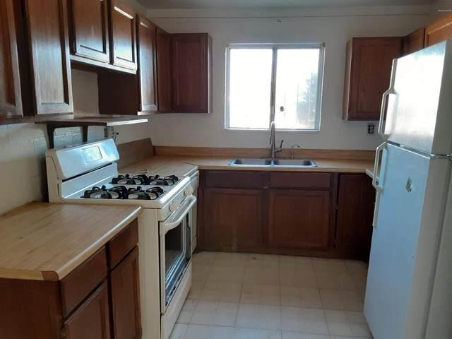 5233 S 11Th Avenue, Tucson, AZ 85706 (#22005516) :: Long Realty Company