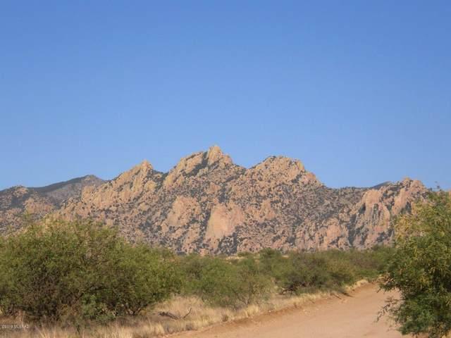 74 E Horse Ranch Road E #74, St. David, AZ 85630 (#22005681) :: Long Realty Company