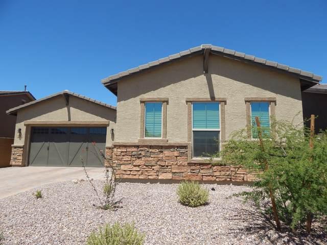 13233 N Rainbow Cactus Court, Tucson, AZ 85755 (#22005764) :: Long Realty - The Vallee Gold Team