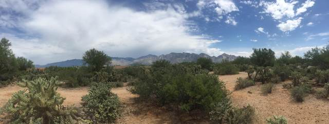 12496 N La Canada (6.6 Acres) Drive N/A, Tucson, AZ 85755 (#22006136) :: Long Realty - The Vallee Gold Team