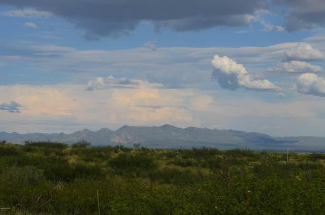 10367 N High Lonesome Road #79, Elfrida, AZ 85610 (#22006178) :: Realty Executives Tucson Elite