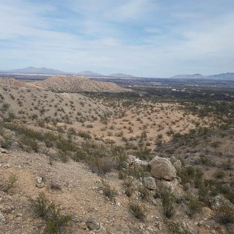 W Rabbit Trail, St. David, AZ 85630 (#22006340) :: Tucson Property Executives