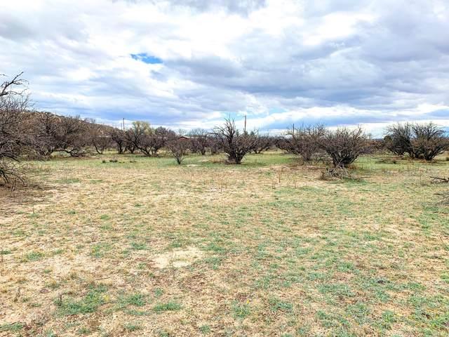 TBD 1 N Puesta Del Sol, St. David, AZ 85630 (#22006354) :: Tucson Property Executives