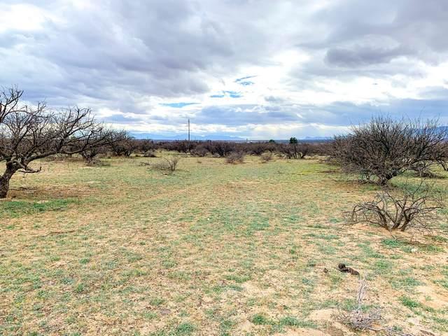 TBD 2 N Puesta Del Sol, St. David, AZ 85630 (#22006356) :: Tucson Property Executives