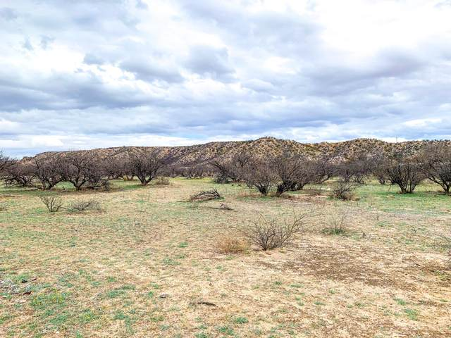 TBD 3 N Puesta Del Sol, St. David, AZ 85630 (#22006359) :: Tucson Property Executives